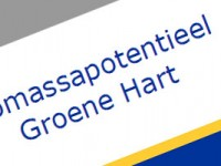 Biomassapotentieel-Groene-H