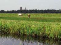 Slootbagger op veengrond