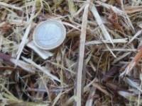5. Biomassa als strooisel